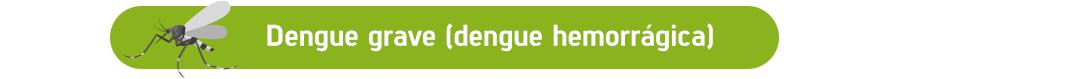 Dengue grave (dengue hemorrágica)
