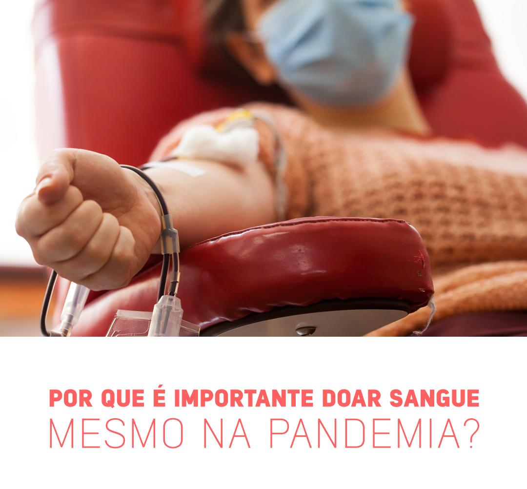 Por que é importante doar sangue mesmo na pandemia?