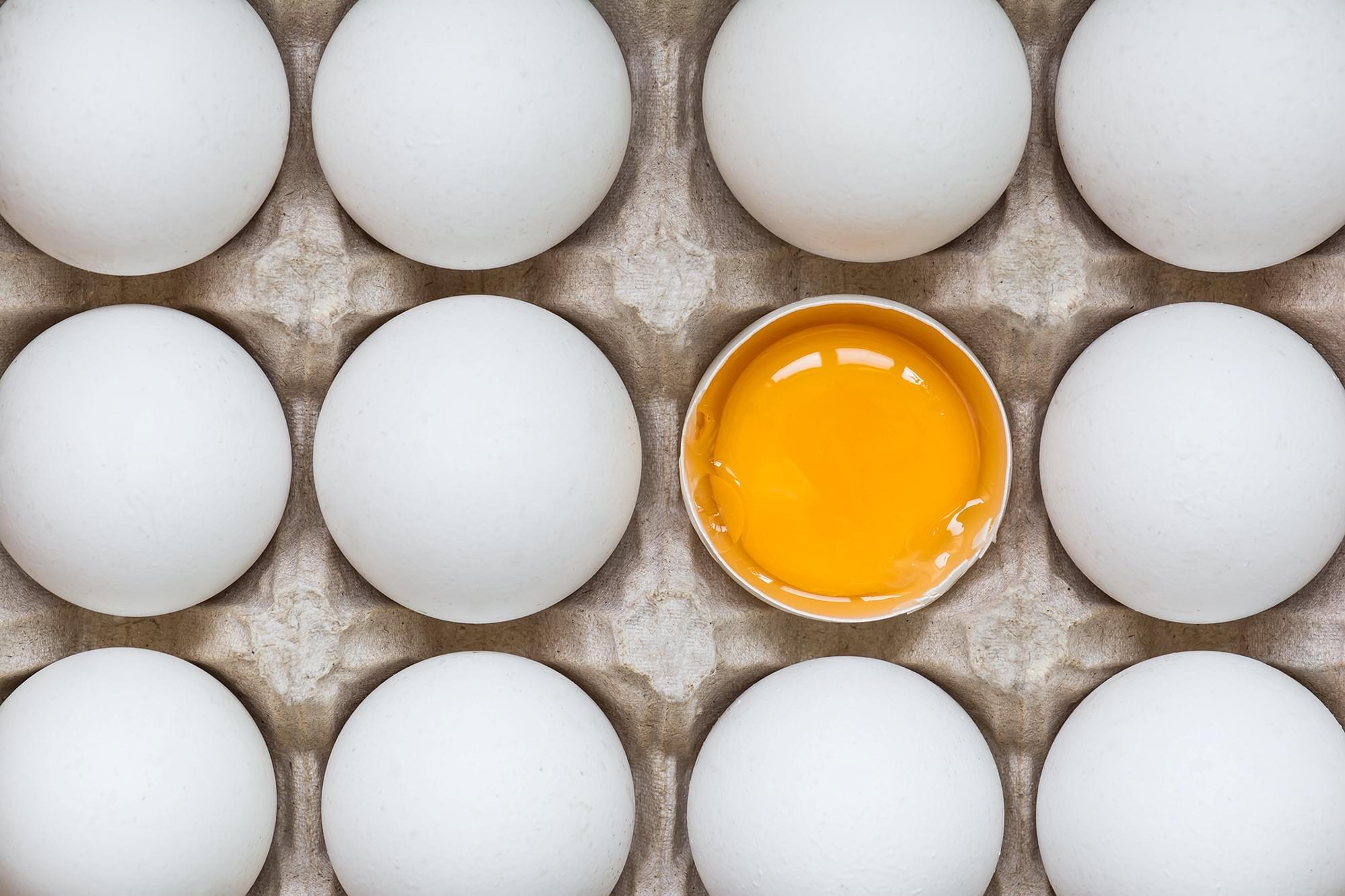 Por que não devemos comer ovos e outros alimentos crus